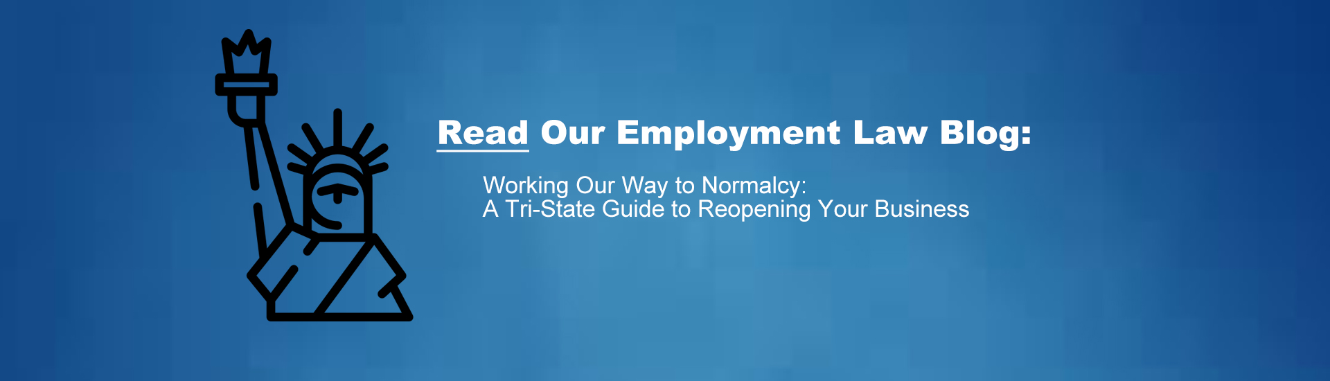 Levy Employment Law